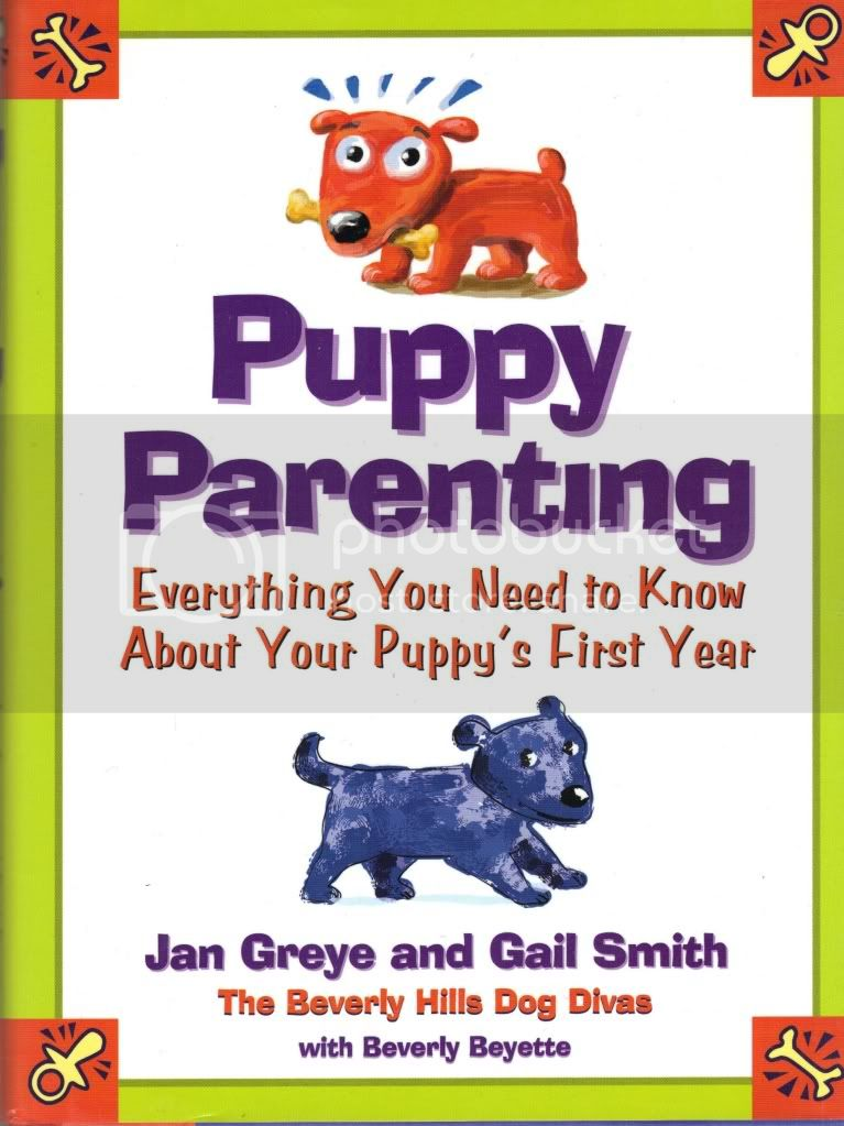 Puppy Parenting Everything You Need to Know About Your Puppys First Year